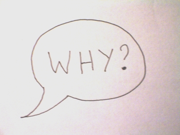 Ask Why? not What?